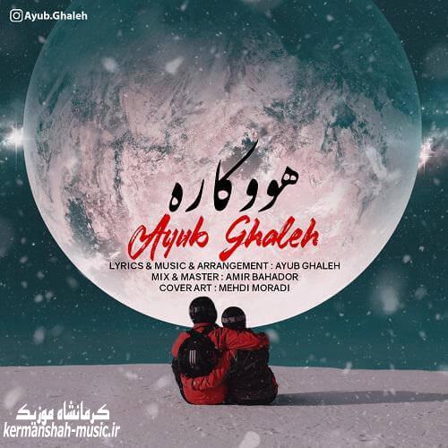 Ayub Ghaleh Hookara - دانلود آهنگ ایوب قلعه به نام هووکاره
